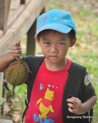 Boy loves Durian, durian cakes