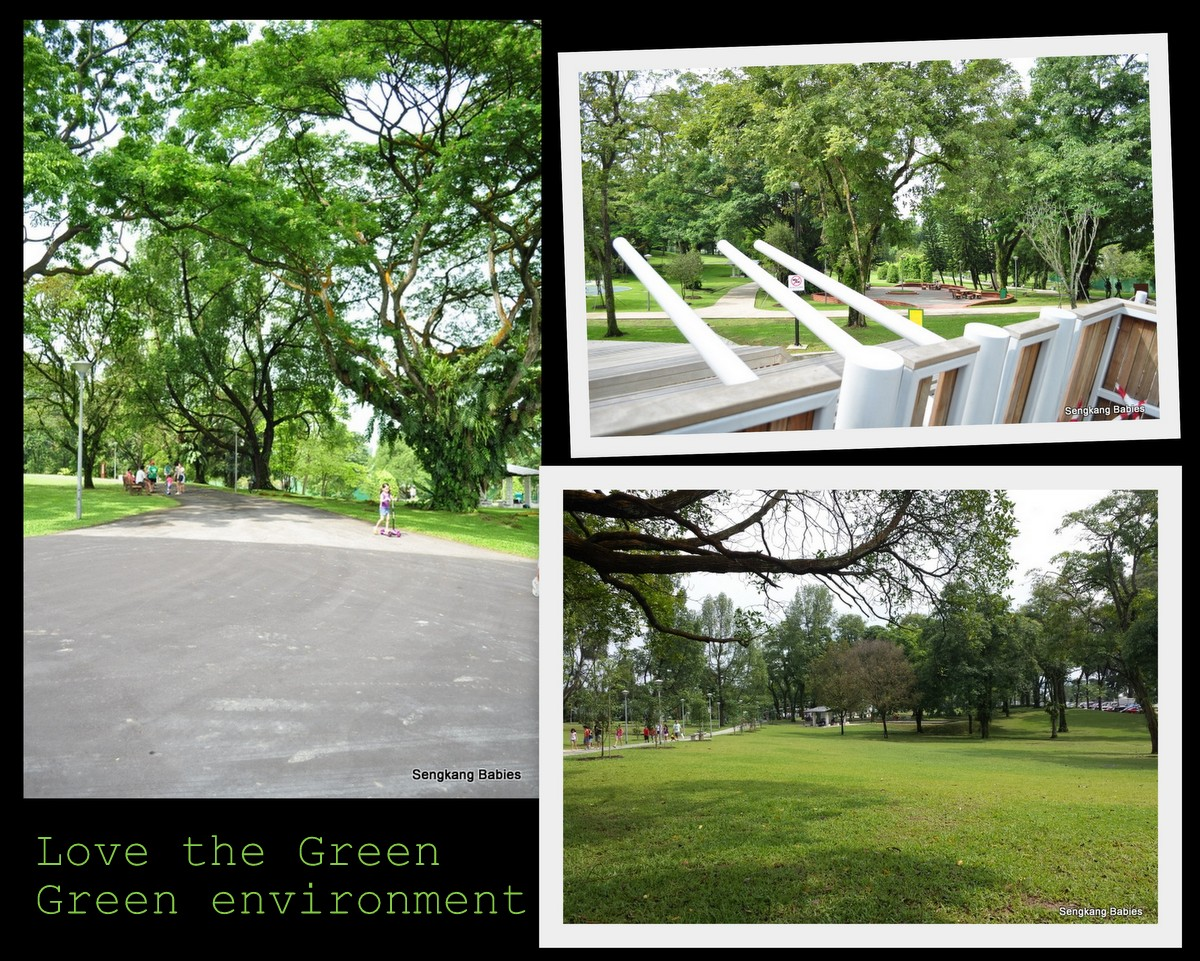 where is Sembawang Playground, greenery around Sembawang park