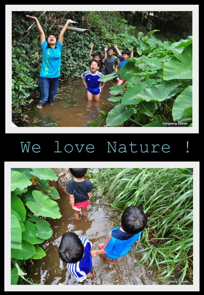 river walk at Bottle Tree park