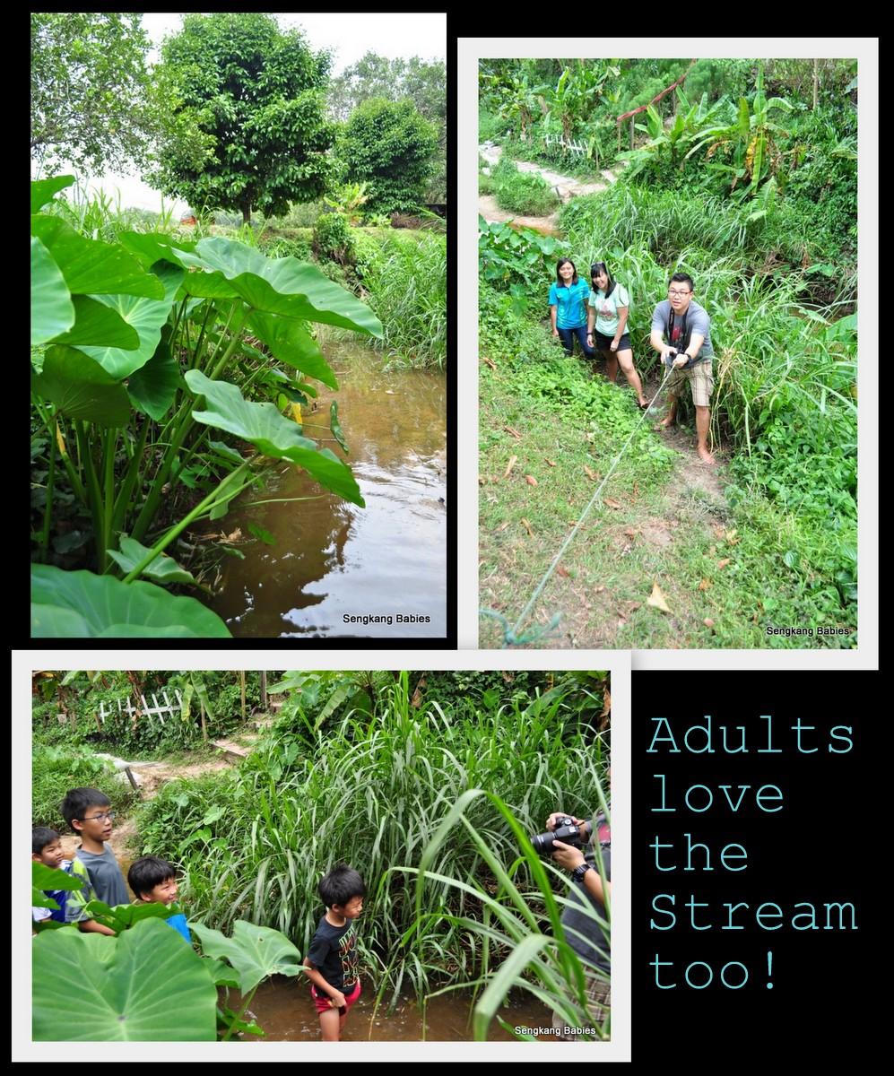 Wow Kampung activities, Fun at Wow kampong