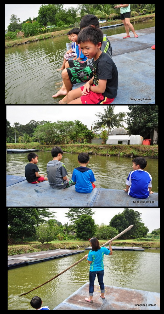 river activities at Bottle Tree park