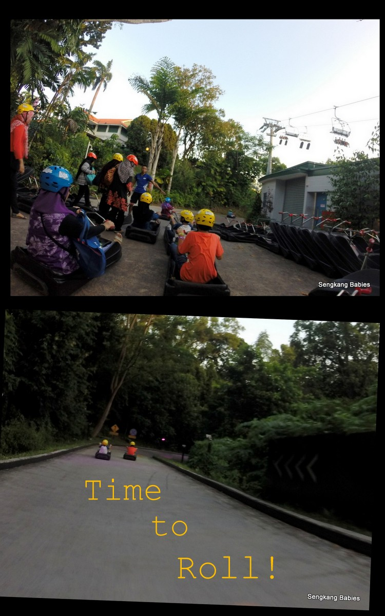 luge going downhill