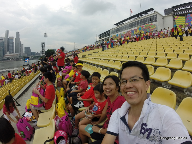 Patroitic Singaporeans, Family enjoying NDP