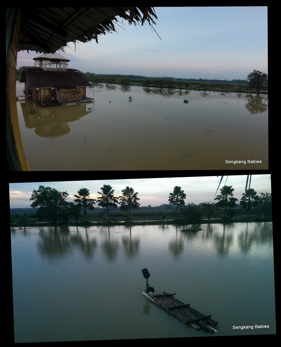 Johor Farms