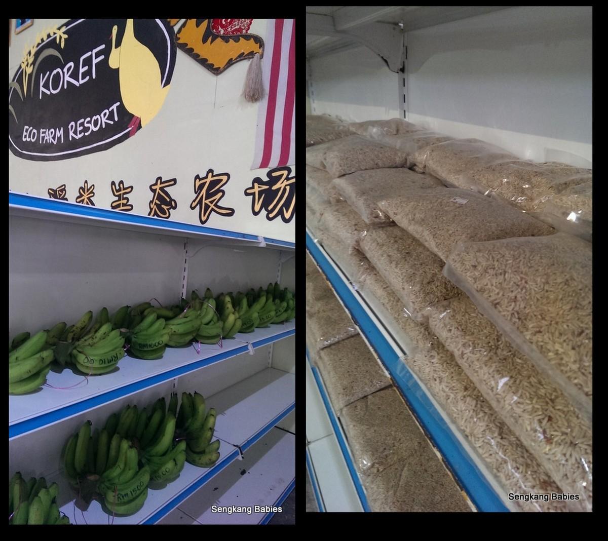 Organic farms Malaysia