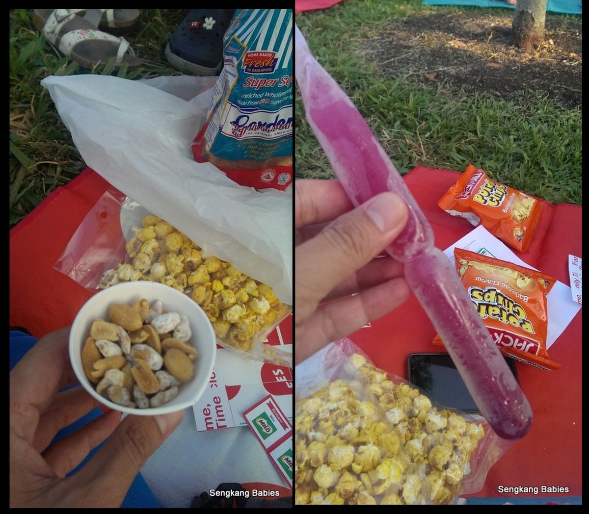 20150627 picnic FFl