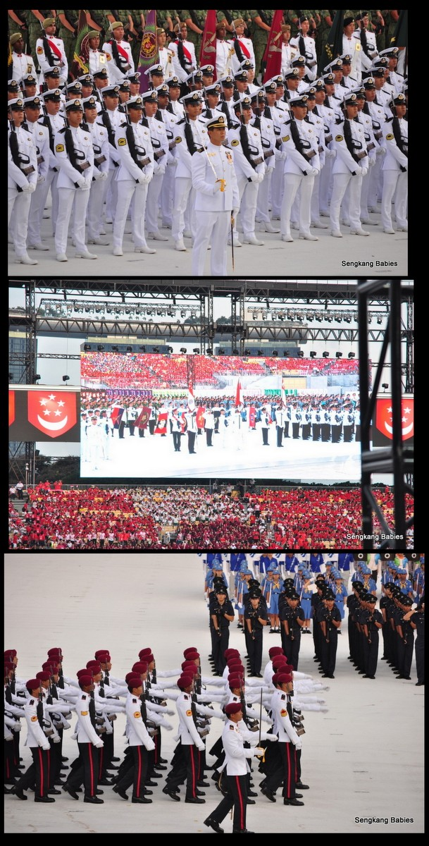 national day parade 2015