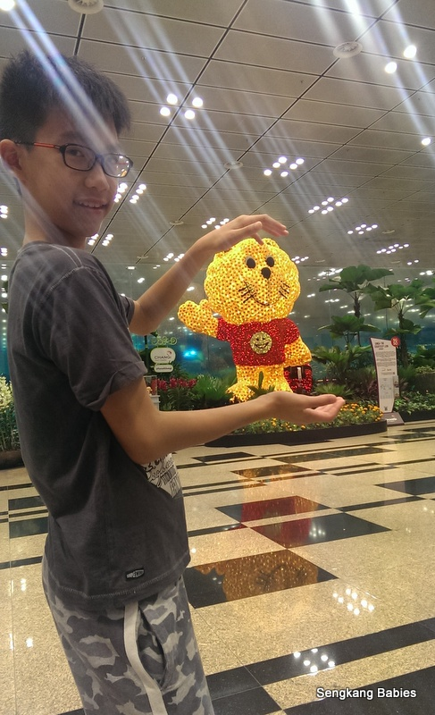Changi Airport SG50 memories