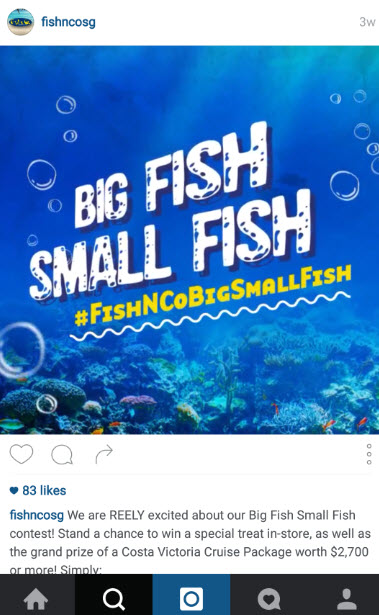 fish&co Instagram contest