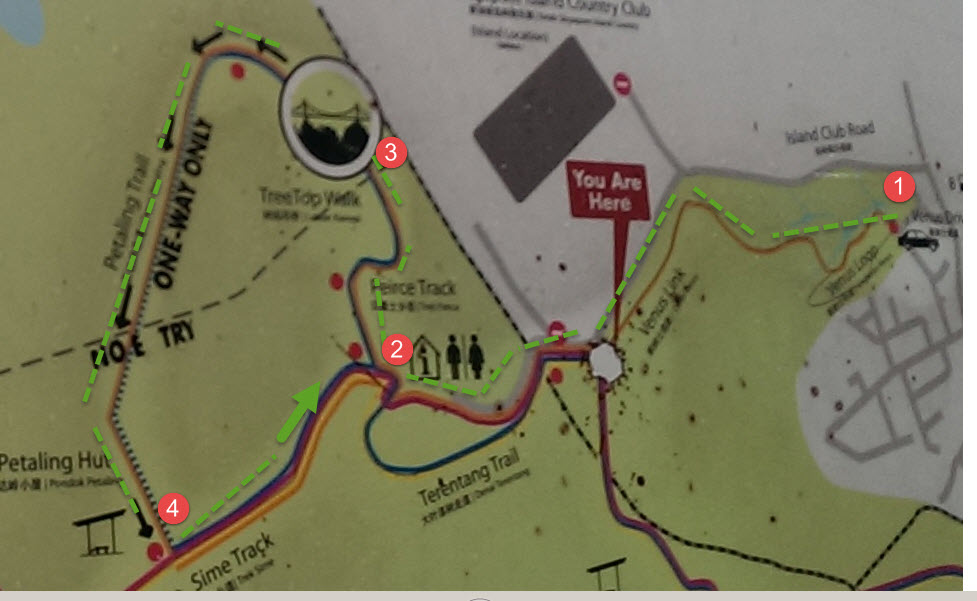 Macritchie Tree Top walk map