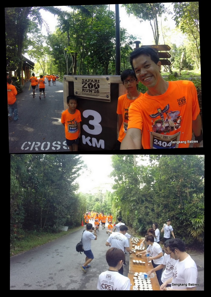 Zoo run 2016 photos