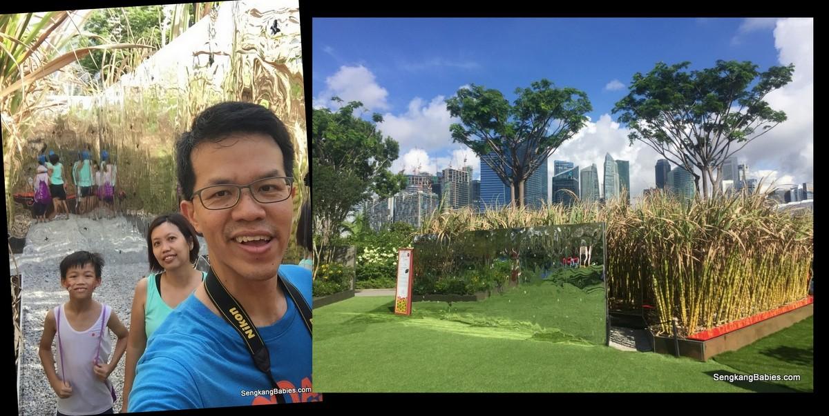 20160724 singapore garden festival