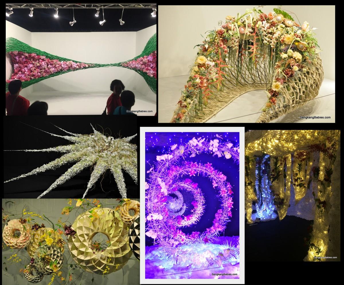 20160724 singapore garden festival18