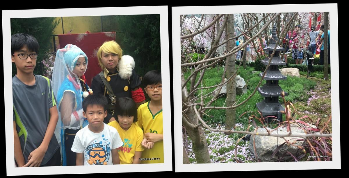 20160319 gardens cherry blossom5