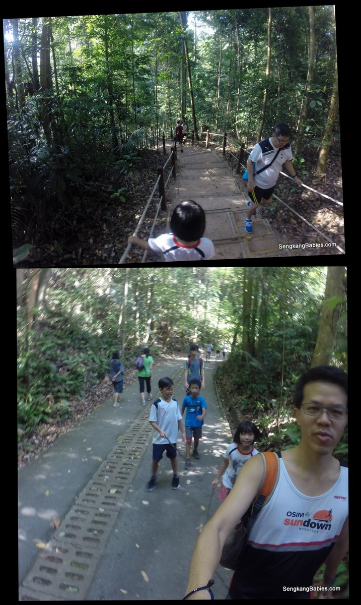 bukit timah hill with family