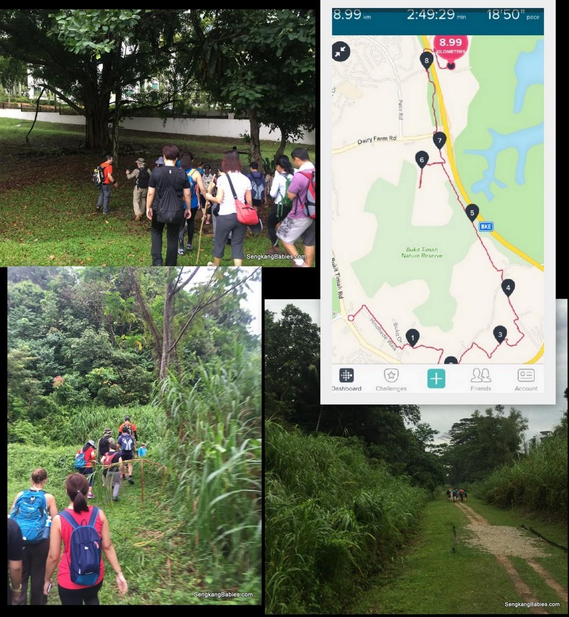 hiking-singapore