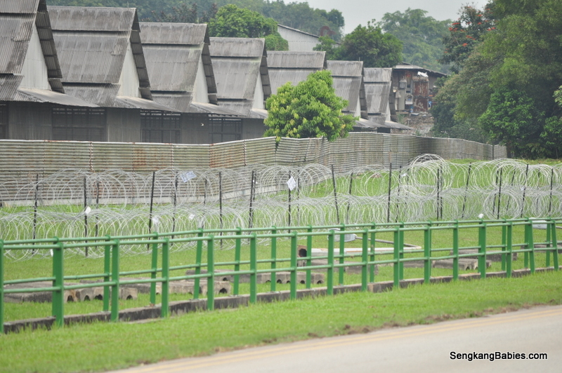 chicken-farms-lim-chu-kang