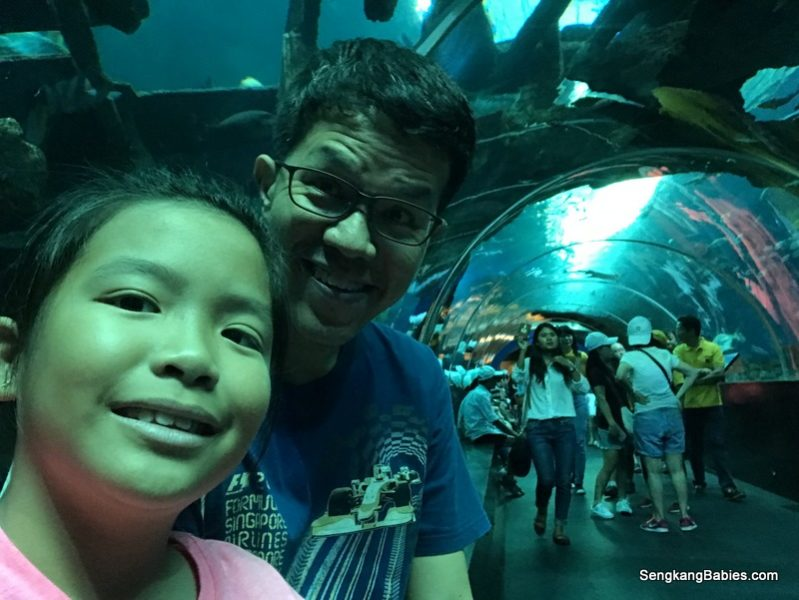 National Geographic's Ocean Wonders at S.E.A Aquarium