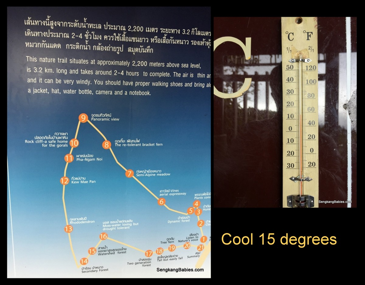 Doi Inthanon temperature