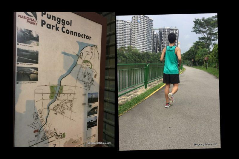 Sengkang Park connector