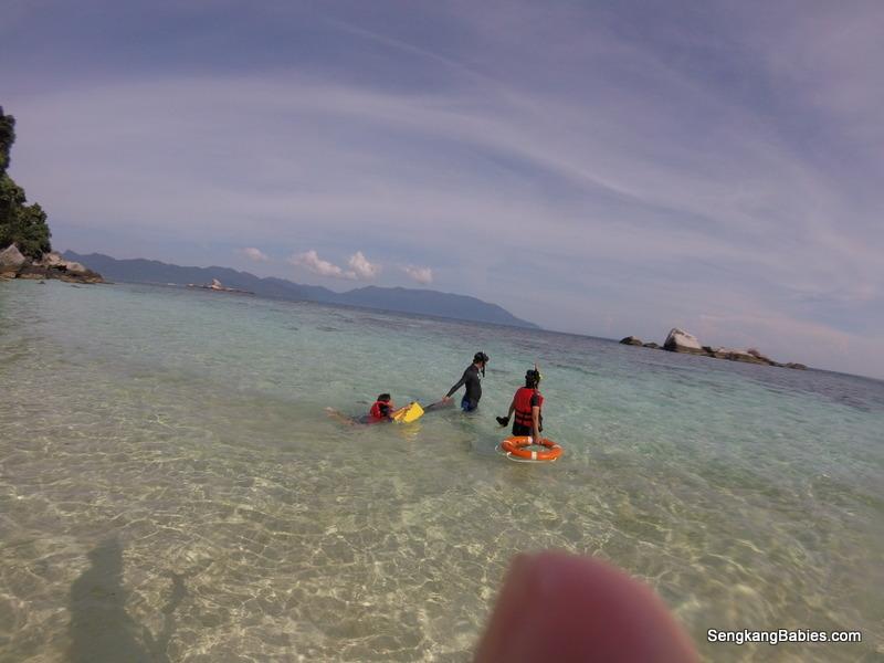 Tioman snokelling with sharks