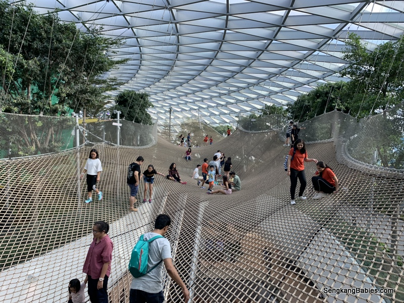 Canopy Park attractions