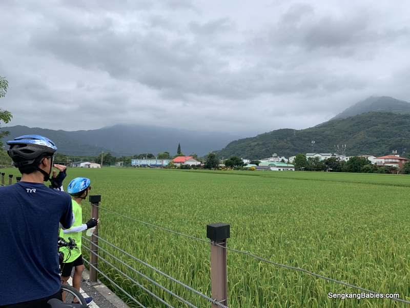Cycling Hualien to Ruisui