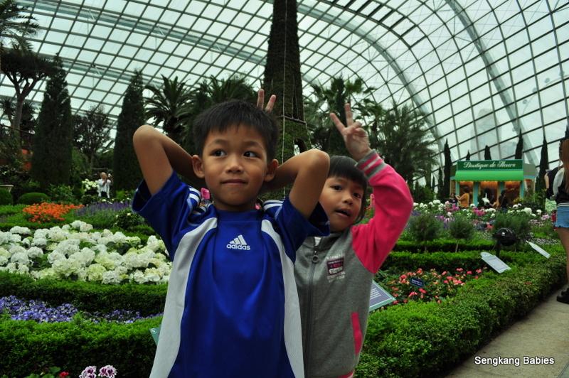 Eiffel tower Flower Dome