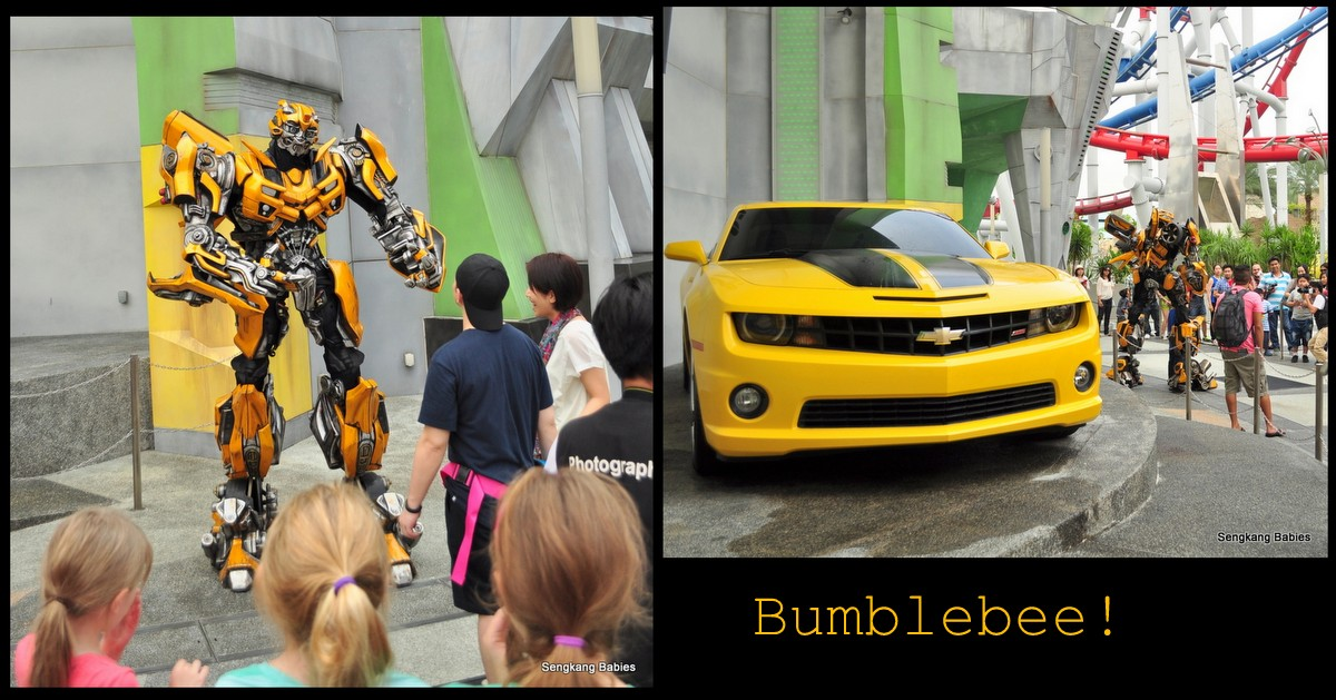 Bumble Bee at Universal Studios