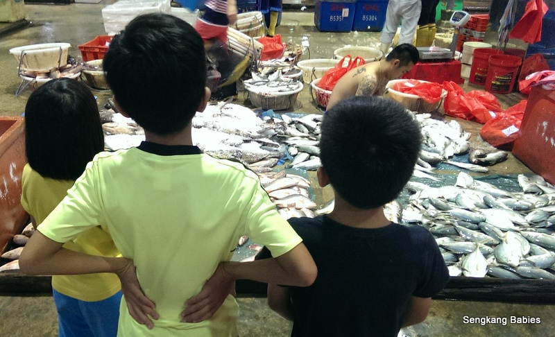 Jurong Fishery port with kids