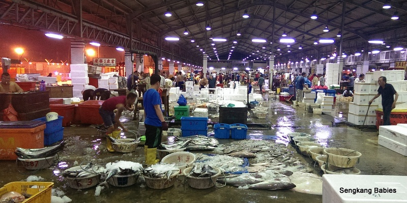 buying fish at Jurong Fishery port