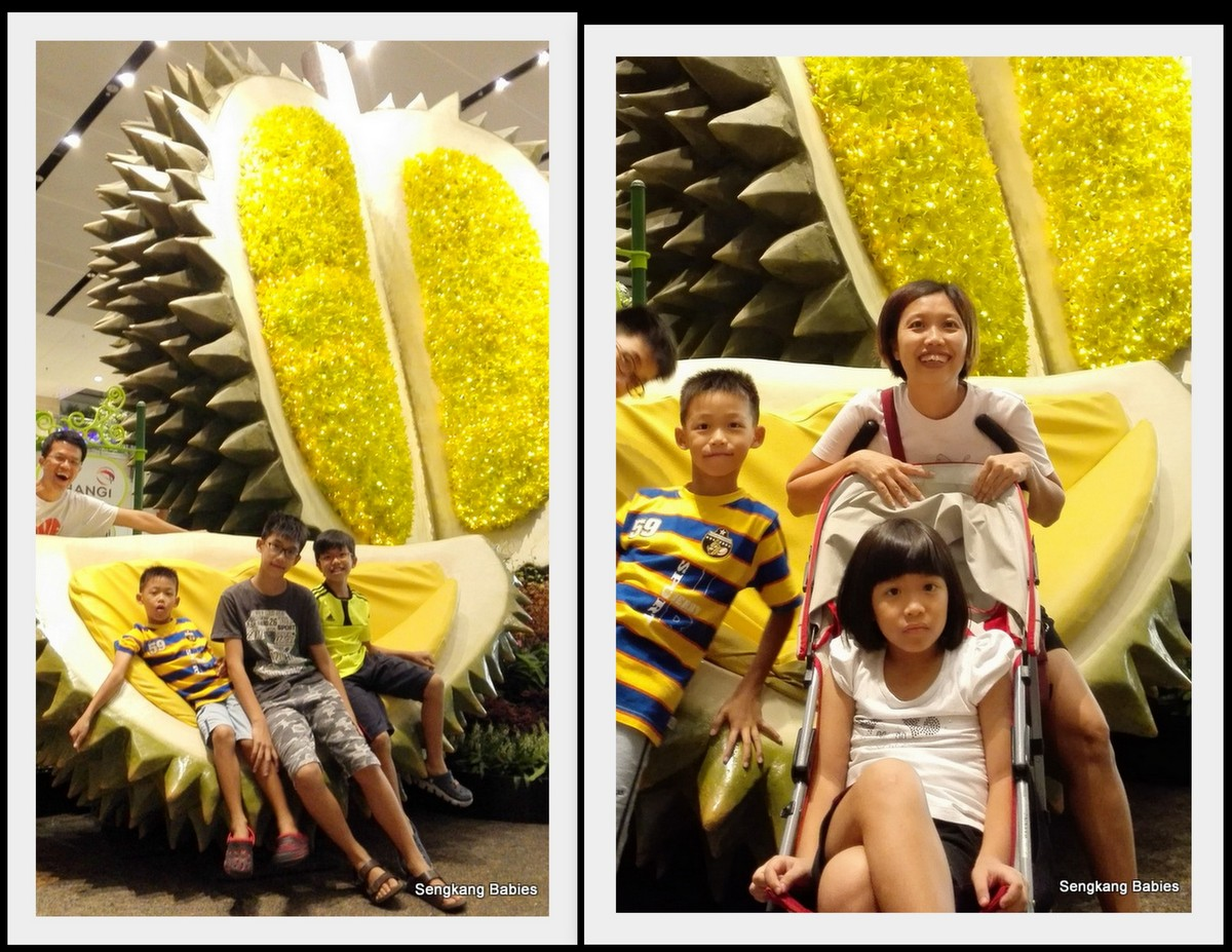 changi airport sg50 durian