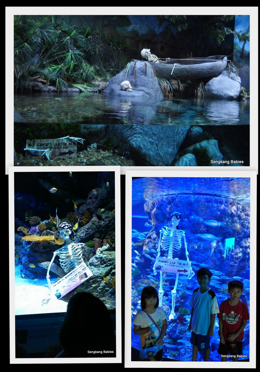 Sea Aquarium Halloween export12