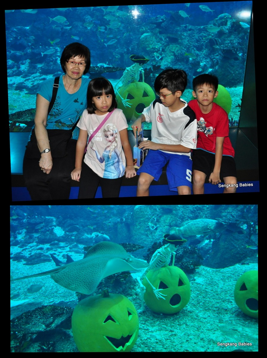Sea Aquarium Halloween