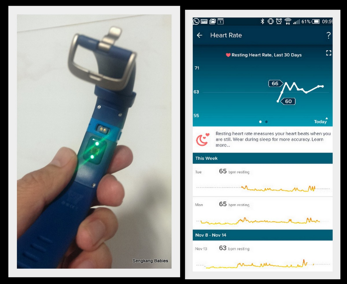 Fitbit heart monitoring