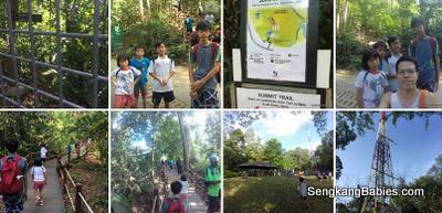 Bukit Timah Hill photos