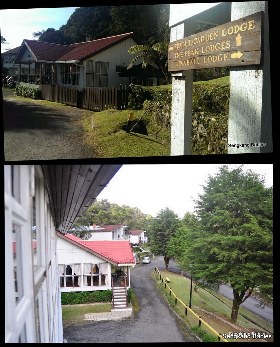 day 4 kinabalu park5