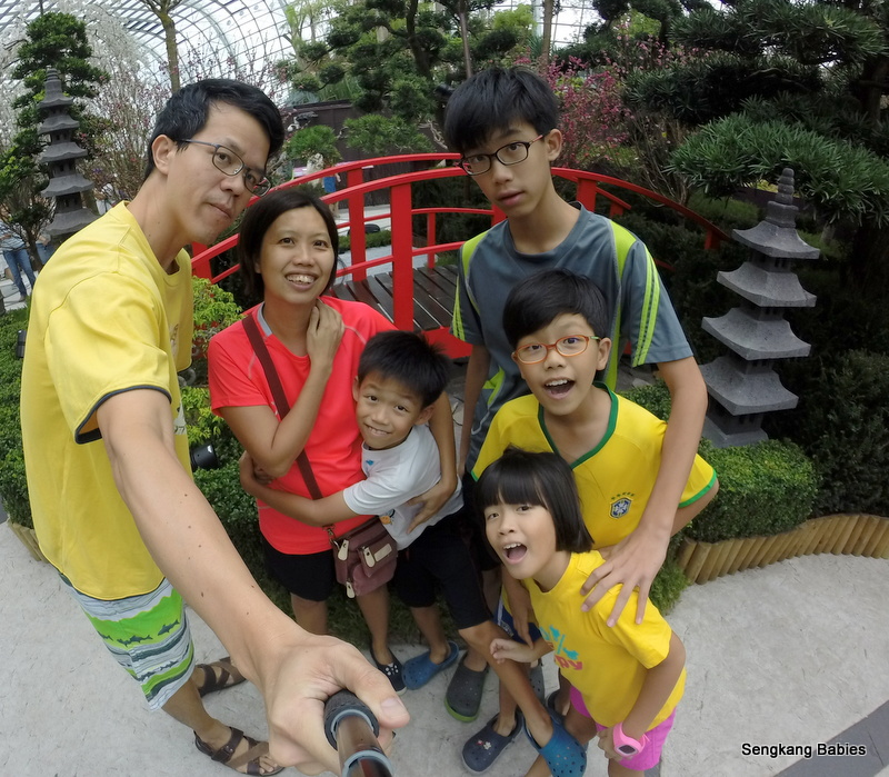 family photo Sakura singapore