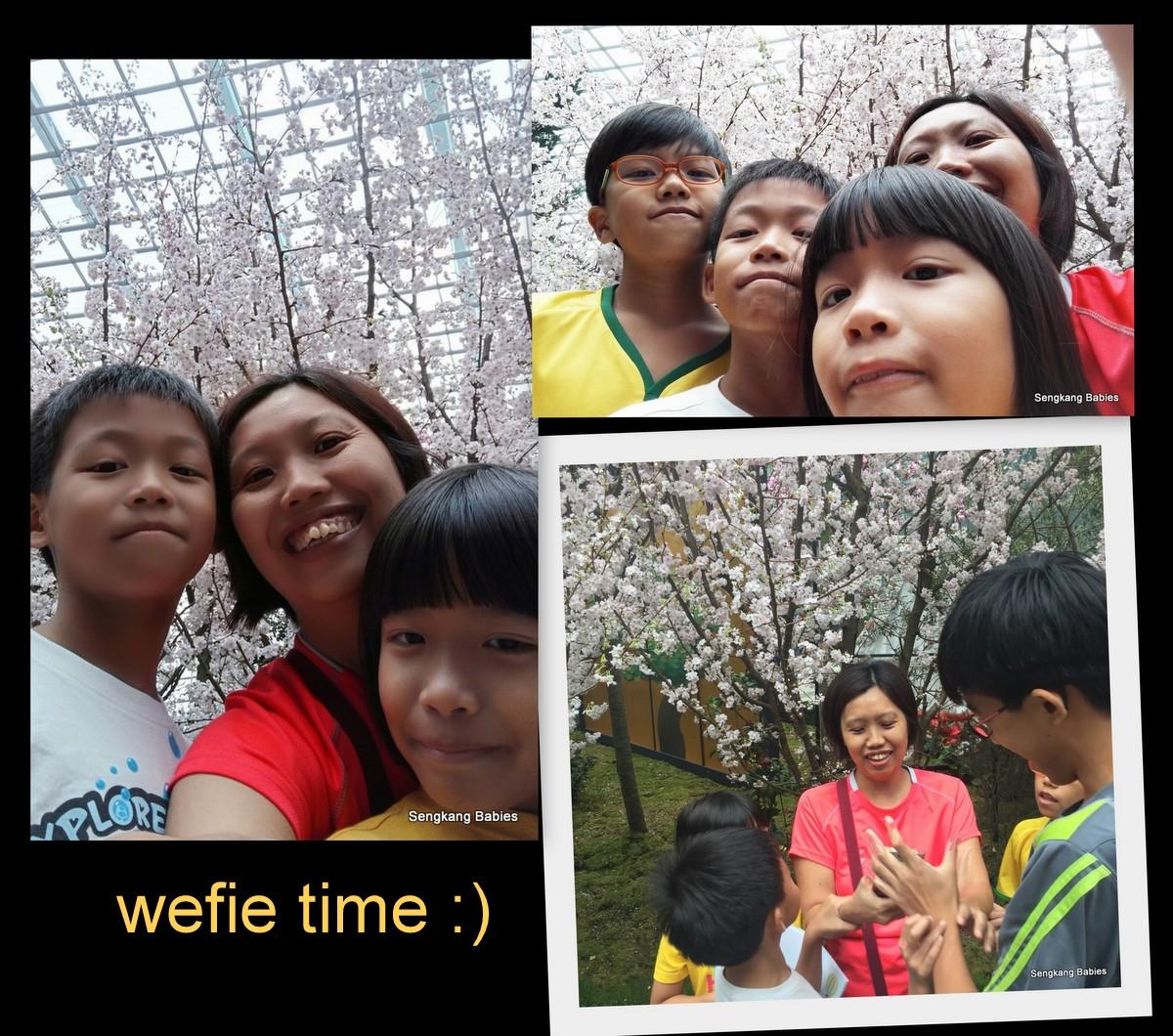gardens cherry blossom selfie