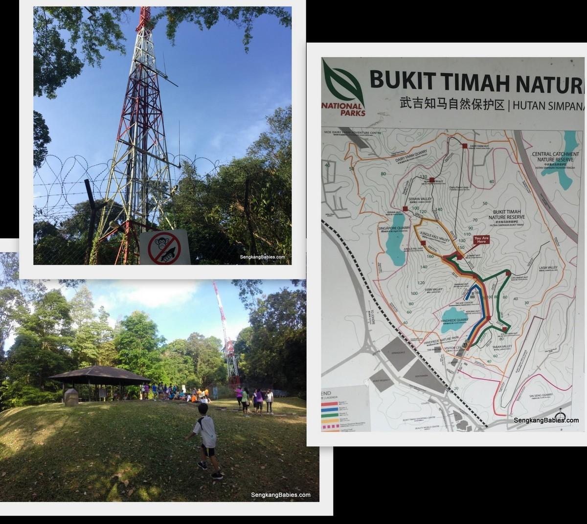 20160403 bukit timah hill exported4