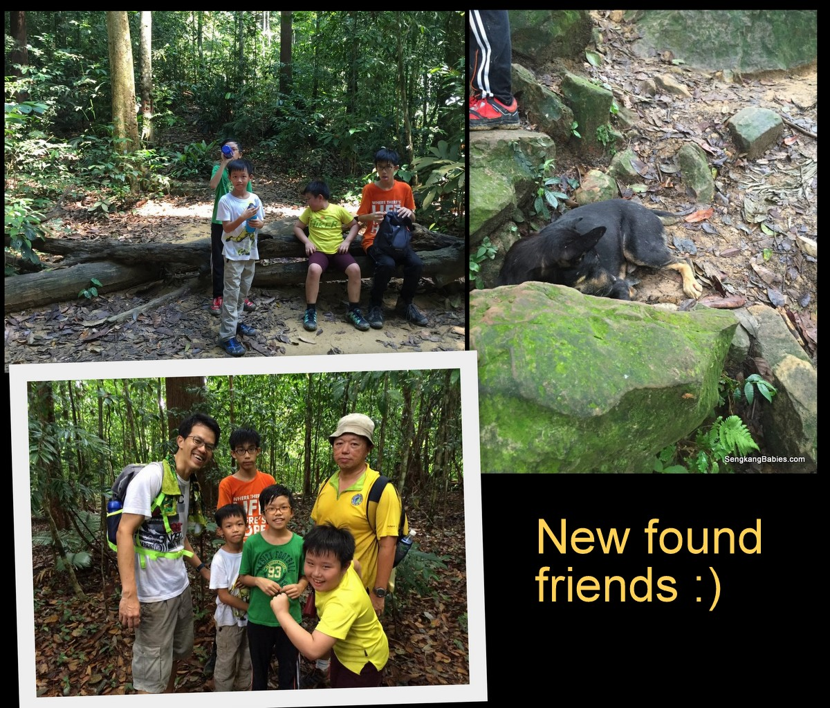 20160612 hike Gunung Panti14