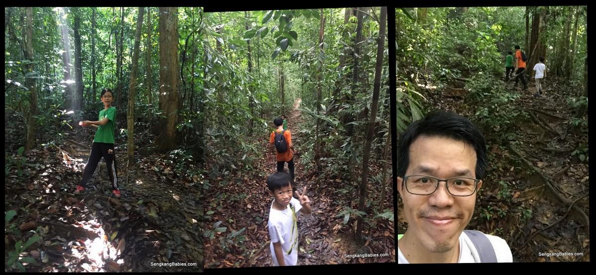 20160612 hike Gunung Panti6