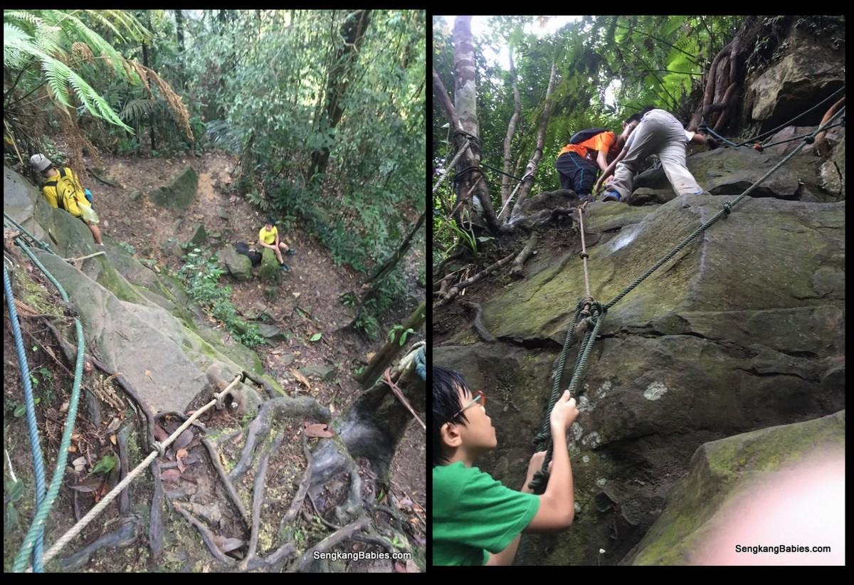 20160612 hike Gunung Panti8