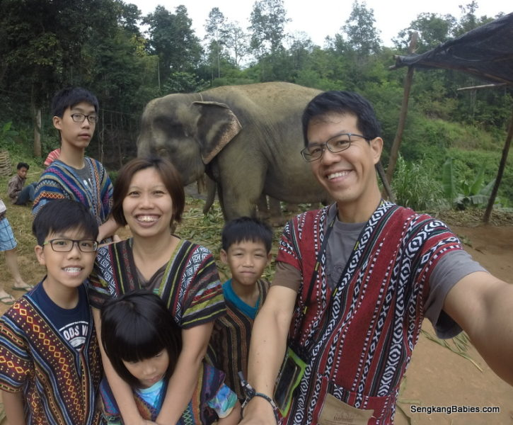 Chiang Mai Elephant Jungle Sanctuary – never ride an elephant again