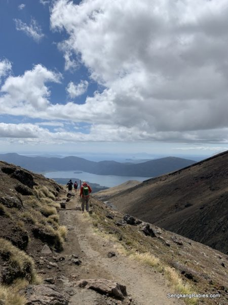 Scenic Tongariro Crossing